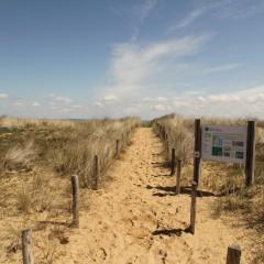 La dune finalement découverte