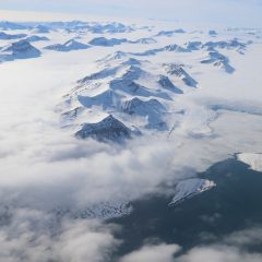 Effets des polluants sur la faune arctique – bande-annonce